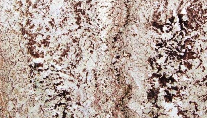 SPLENDOUR WHITE GRANITE